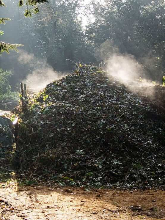 Biological processing in waste disposal